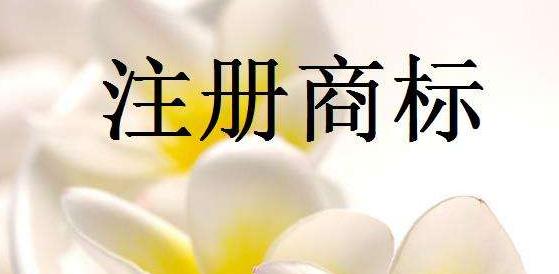 第19类<a href='https://www.hengshuixinxin.cn/r/' target='_blank'><u>商标注册</u></a>流程