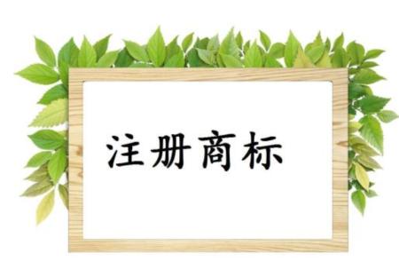 个人注册商标和<a href='https://www.hengshuixinxin.cn/news/' target='_blank'><u>公司注册</u></a>商标有什么区别